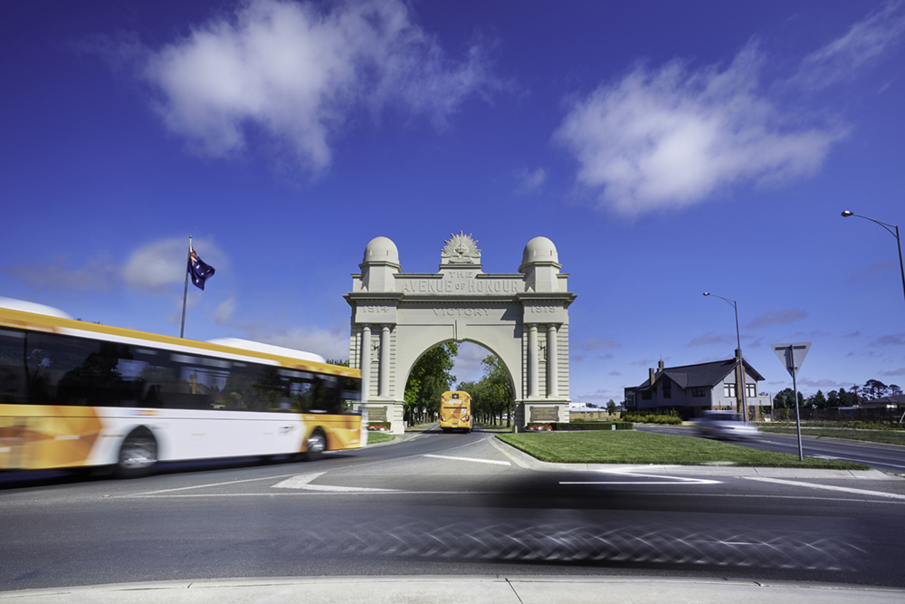 Buses travelling under Ballarat Avenue of Honour